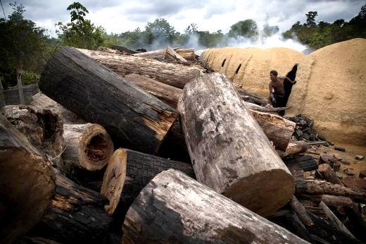 UN'ALTRA VITTIMA NELLA LOTTA CONTRO LA DEFORESTAZIONE IN AMAZZONIA.