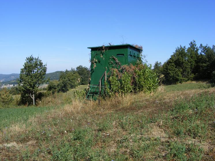 Regione Veneto: appostamenti fissi di caccia realizzati solo con una comunicazione ai Comuni.
